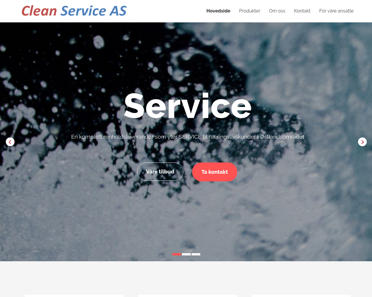 cleanservice.no presentation